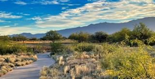 Preserve Vistoso Picture Of Golf Course